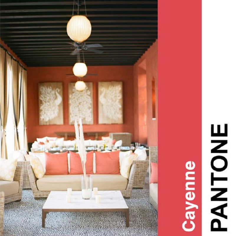 Cayenne  2014 FASHION COLOR TRENDS BY PANTONE Cayenne